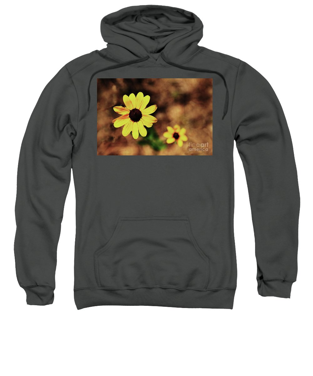 Sunflower Sweatshirt featuring the photograph Petals Stretched by Kim Henderson