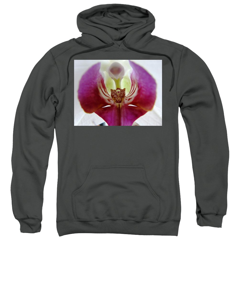 Flower Sweatshirt featuring the photograph Phalaenopsis Orchid Detail by Valerie Ornstein
