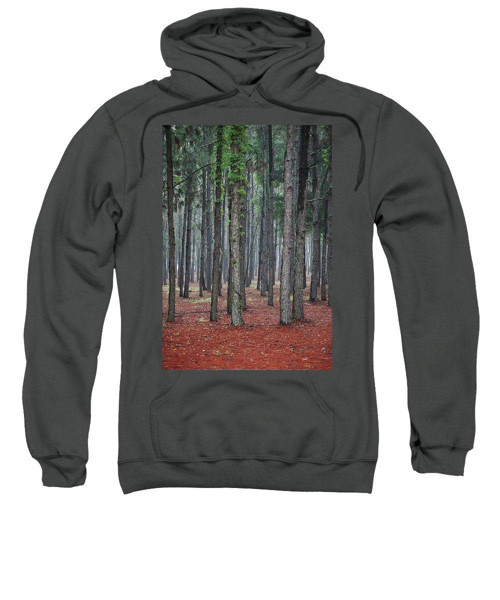 Pine Trees Sweatshirt featuring the photograph Pine Trees by Robert Meanor