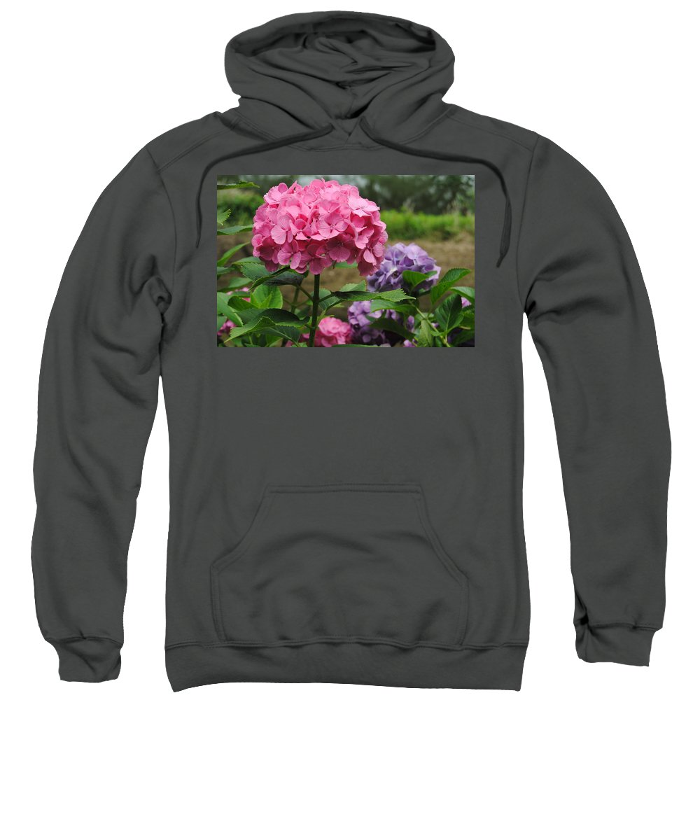 Hydrangea Photography Sweatshirt featuring the photograph Pink And Purple by Kathleen Sartoris