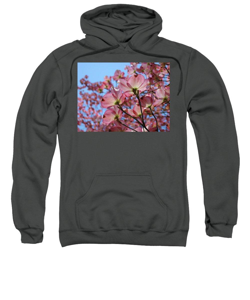 Dogwood Sweatshirt featuring the photograph Pink Dogwood Flowers Landscape 11 Blue Sky Botanical Artwork Baslee Troutman by Baslee Troutman
