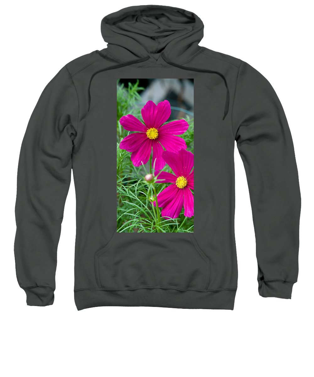 Pink Sweatshirt featuring the photograph Pink Flower by Michael Bessler