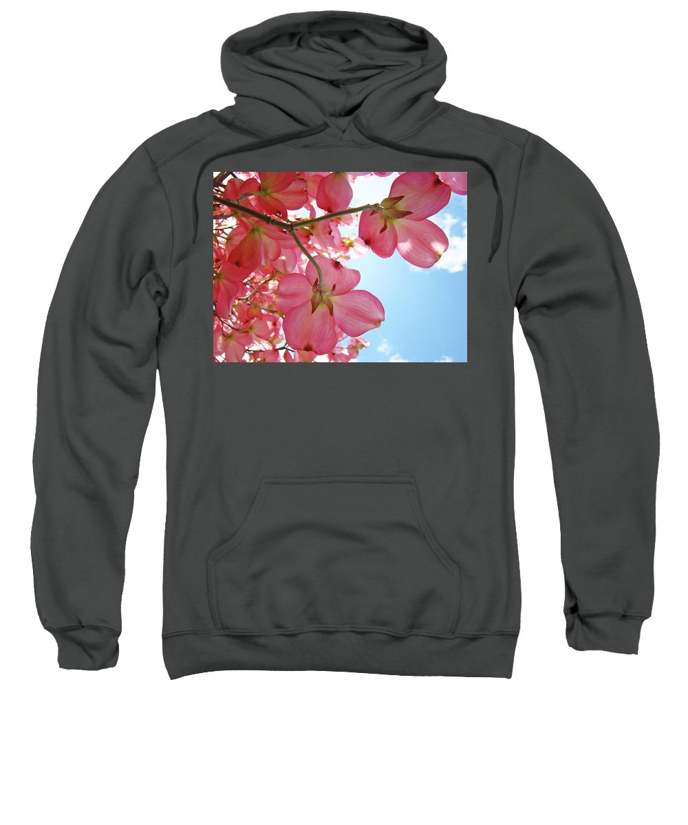 Dogwood Sweatshirt featuring the photograph Pink Flowering Dogwood Tree Art Prints Blue Sky Baslee Troutman by Baslee Troutman