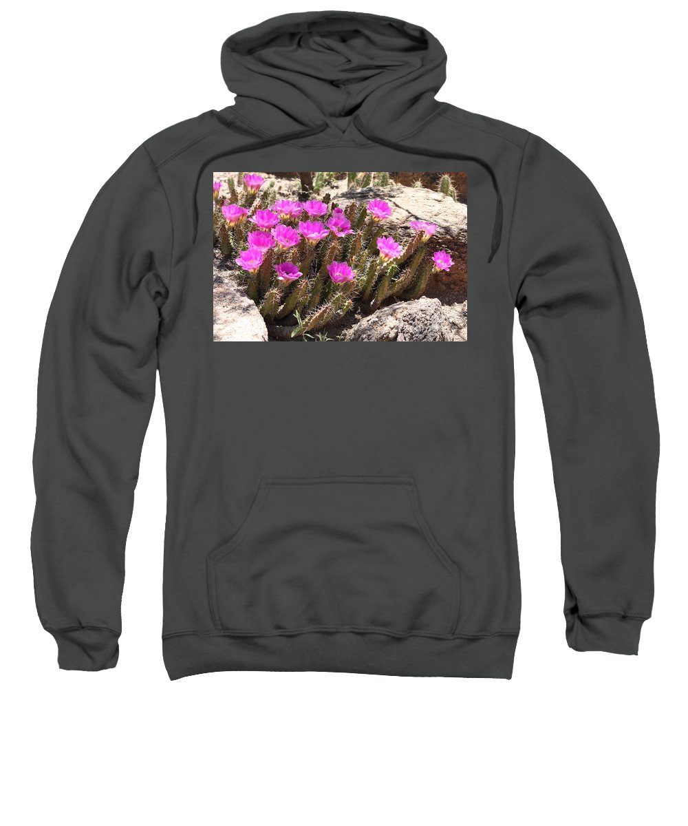 Pink Flowers Sweatshirt featuring the photograph Pink Flowers In The Desert by Carol Groenen