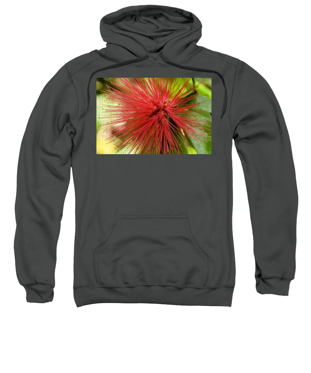 Flower Sweatshirt featuring the photograph Pink Fringe by Wendy Fox