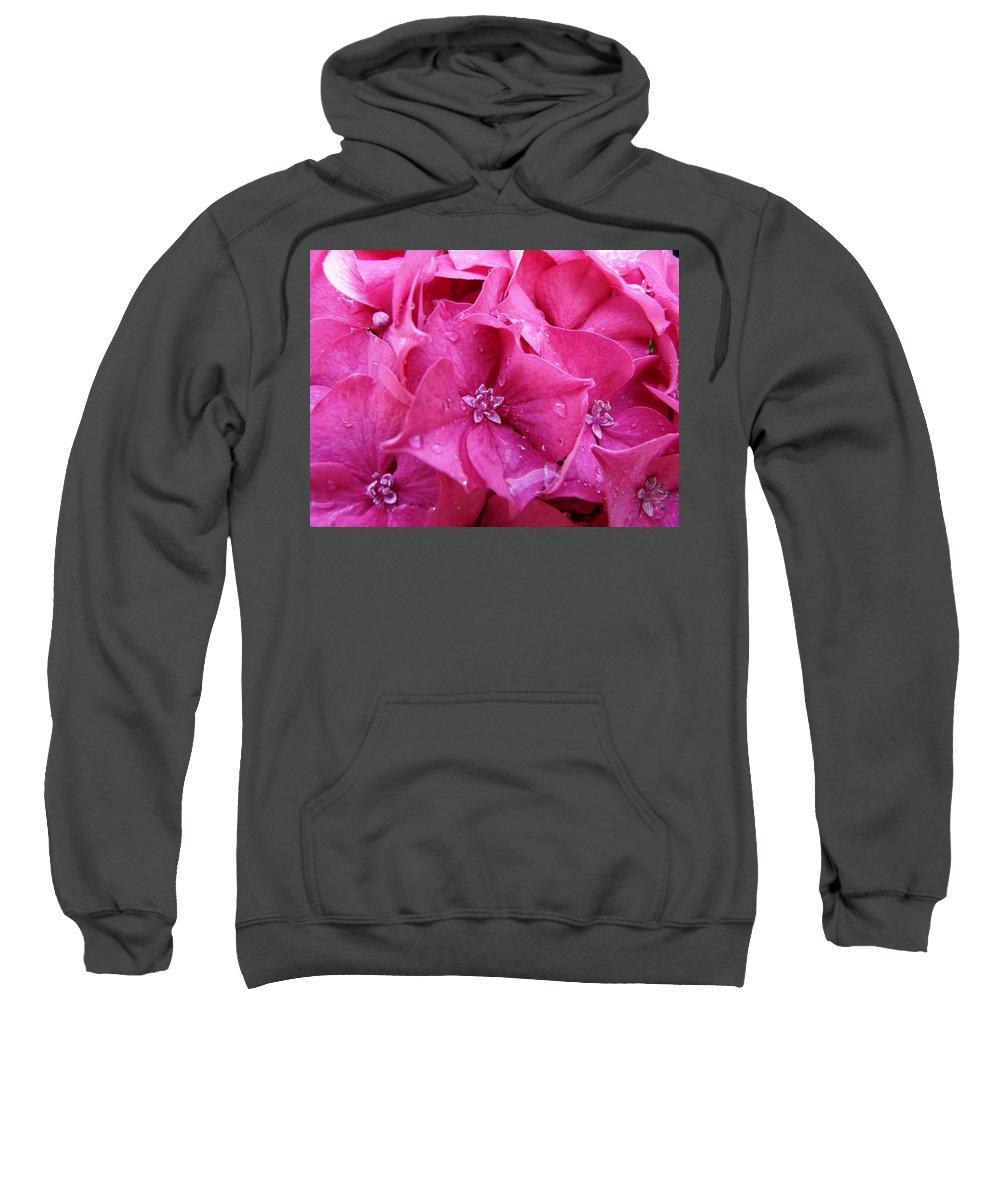 Flower Sweatshirt featuring the photograph Pink Hydrangea After Rain by Valerie Ornstein