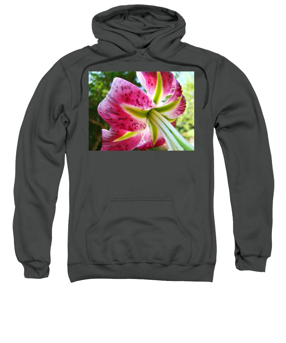 Lily Sweatshirt featuring the photograph Pink Lily Summer Botanical Garden Art Prints Baslee Troutman by Baslee Troutman