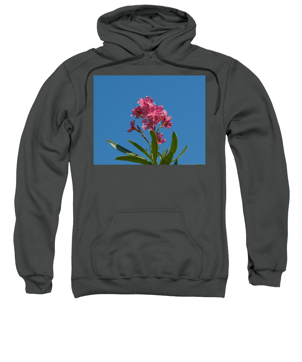 Florida; Indian; River; Melbourne; Nerium; Oleander; Red; Pink; Flower; Bush; Shrub; Poison; Poisono Sweatshirt featuring the photograph Pink Oleander Flower In Spring by Allan Hughes