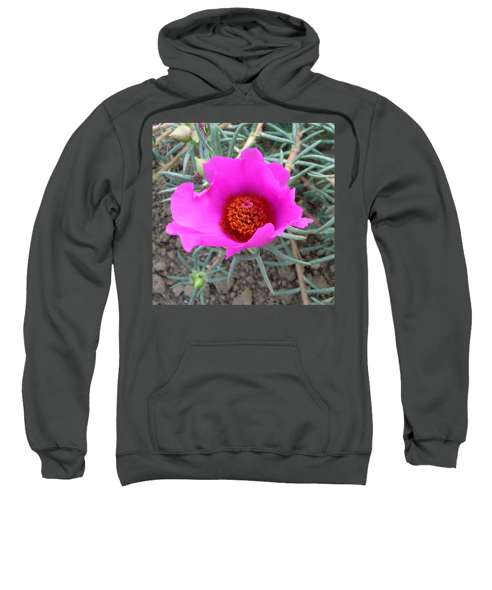 Flower Sweatshirt featuring the photograph Pink Or Wot by Susan Baker