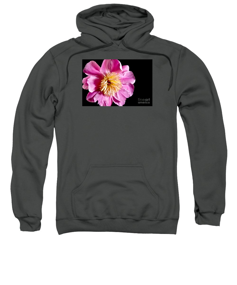 Flowers Sweatshirt featuring the photograph Pink Petals by Robin Lynne Schwind
