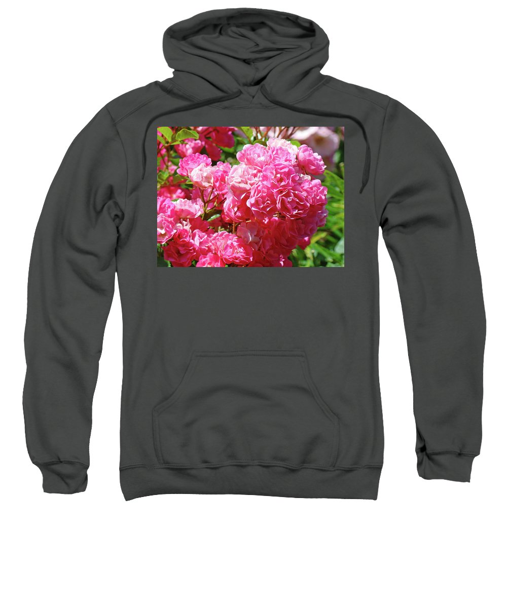 Rose Sweatshirt featuring the photograph Pink Roses Summer Rose Garden Roses Giclee Art Prints Baslee Troutman by Baslee Troutman