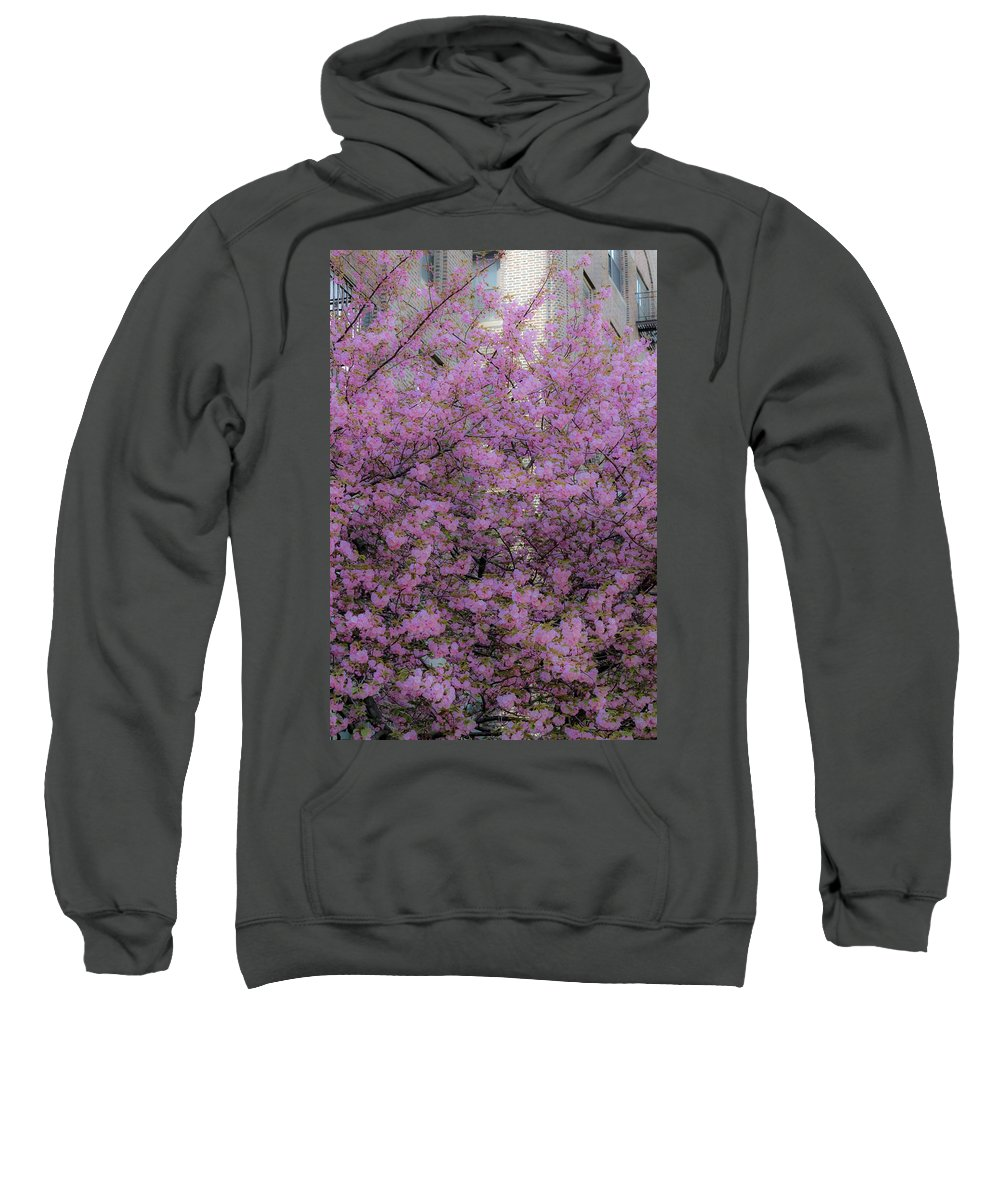 Pink Sweatshirt featuring the painting Pink Tree by Eric Barnes