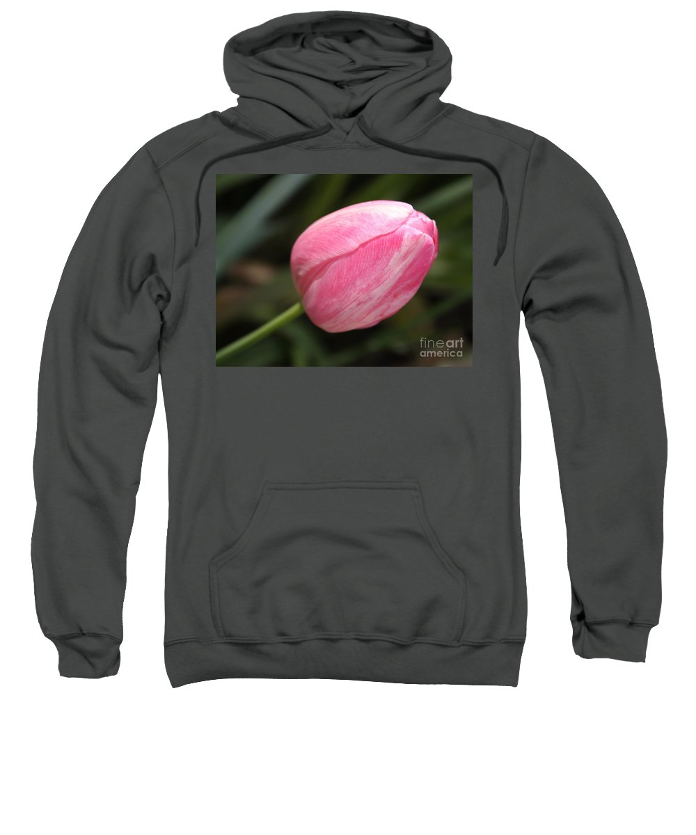 Tulip Sweatshirt featuring the photograph Pink Tulip Closeup by Carol Groenen