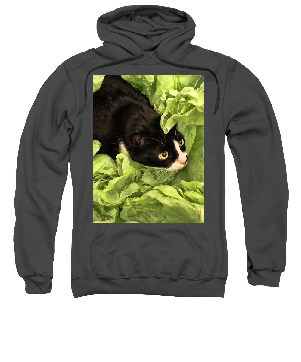 Tuxedo Sweatshirt featuring the photograph Playful Tuxedo Kitty In Green Tissue Paper by Kathy Clark