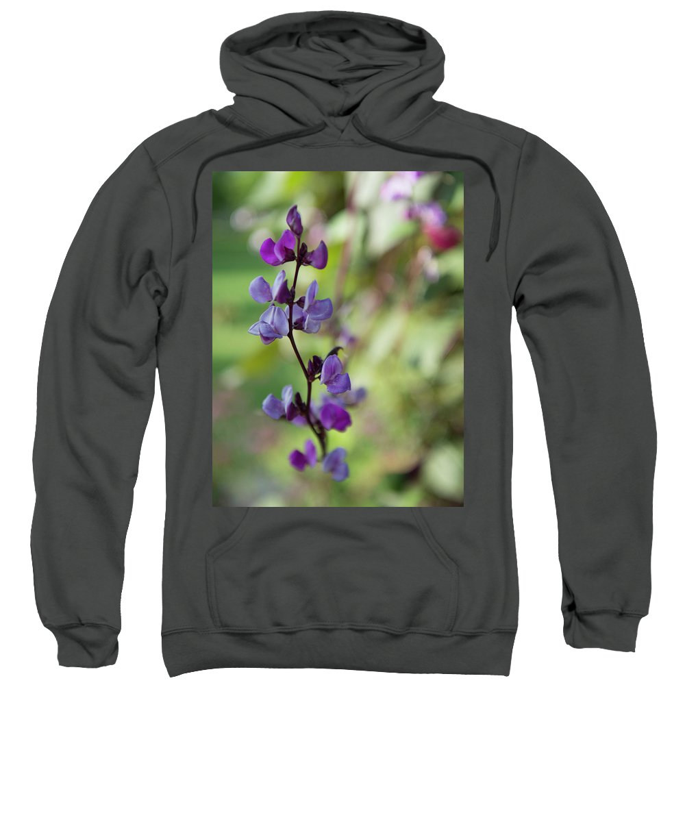 Flower Sweatshirt featuring the photograph Pleasing Purple Plant Picture by Karl Schroeder