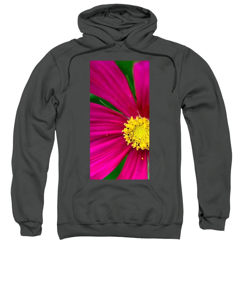 Plink Sweatshirt featuring the photograph Plink Flower Closeup by Michael Bessler