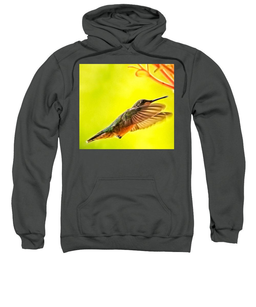 Hummingbird Sweatshirt featuring the photograph Poetry In Motion by John Prickett