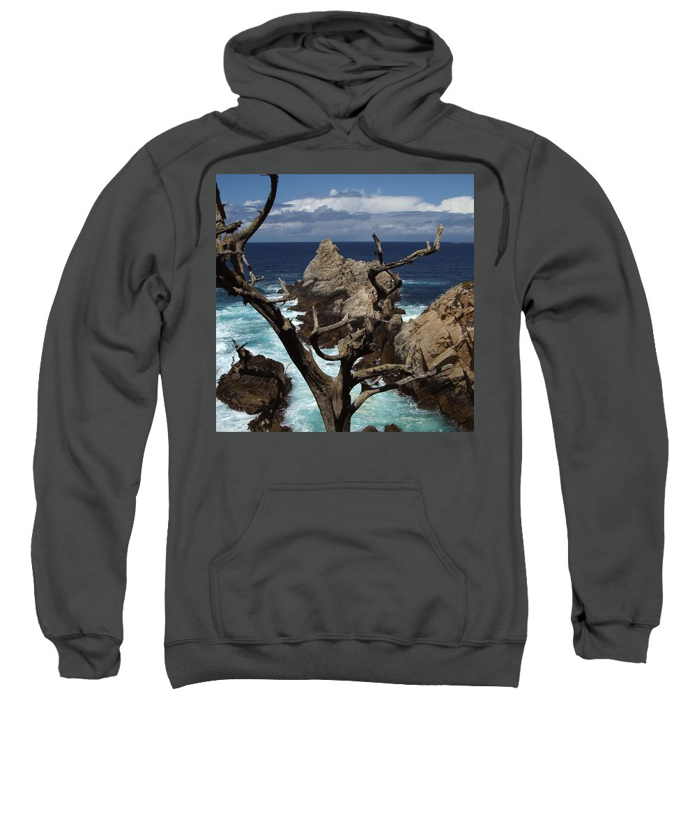 Carmel Sweatshirt featuring the photograph Point Lobos Rocks And Branches by Charlene Mitchell