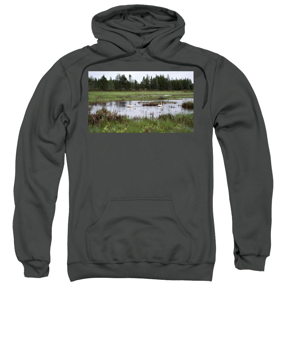 Seney Wetland Sweatshirt featuring the photograph Pond And Swans by Linda Kerkau
