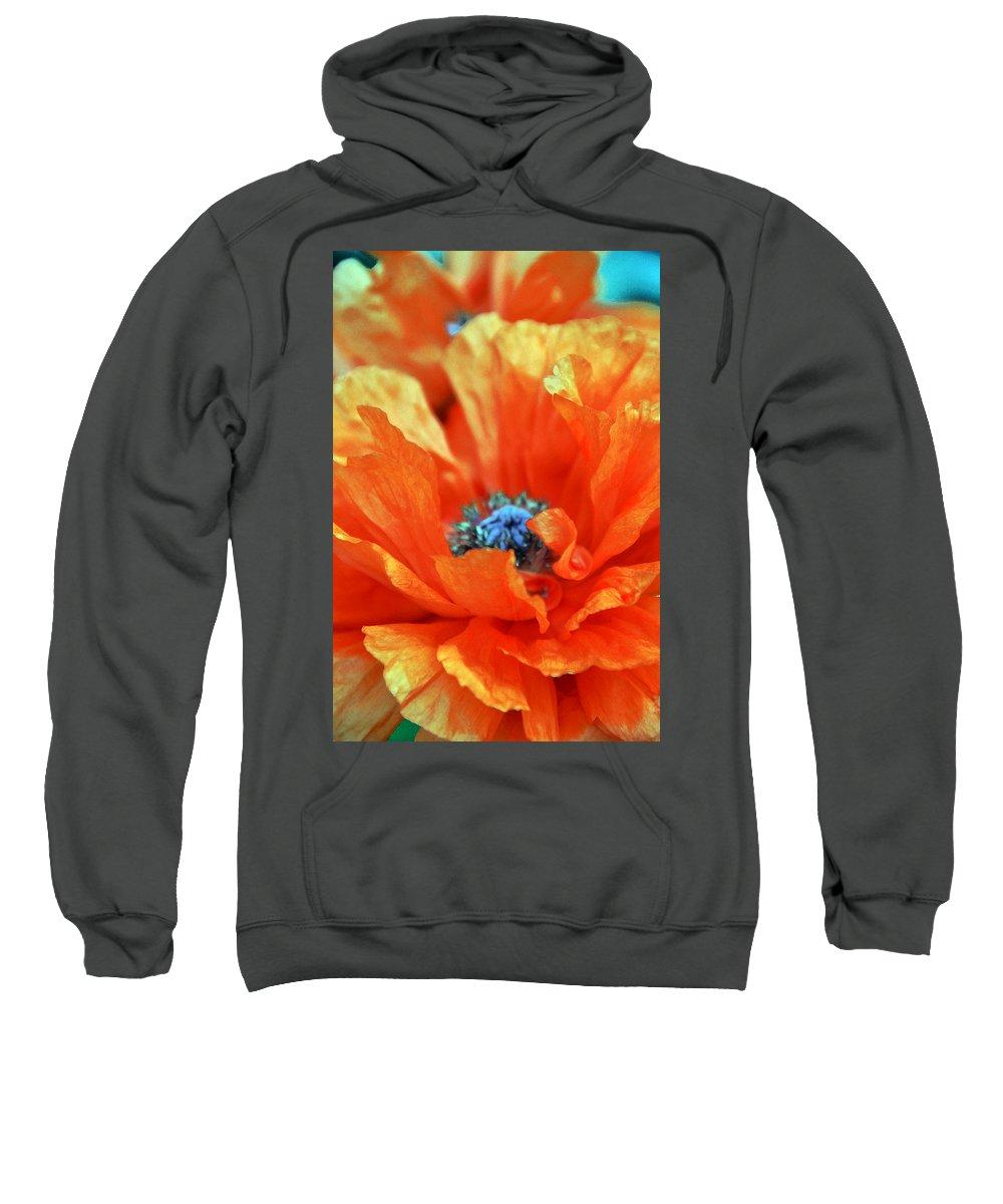Papaver Somniferum. Opium Sweatshirt featuring the photograph Poppy by Angelina Vick
