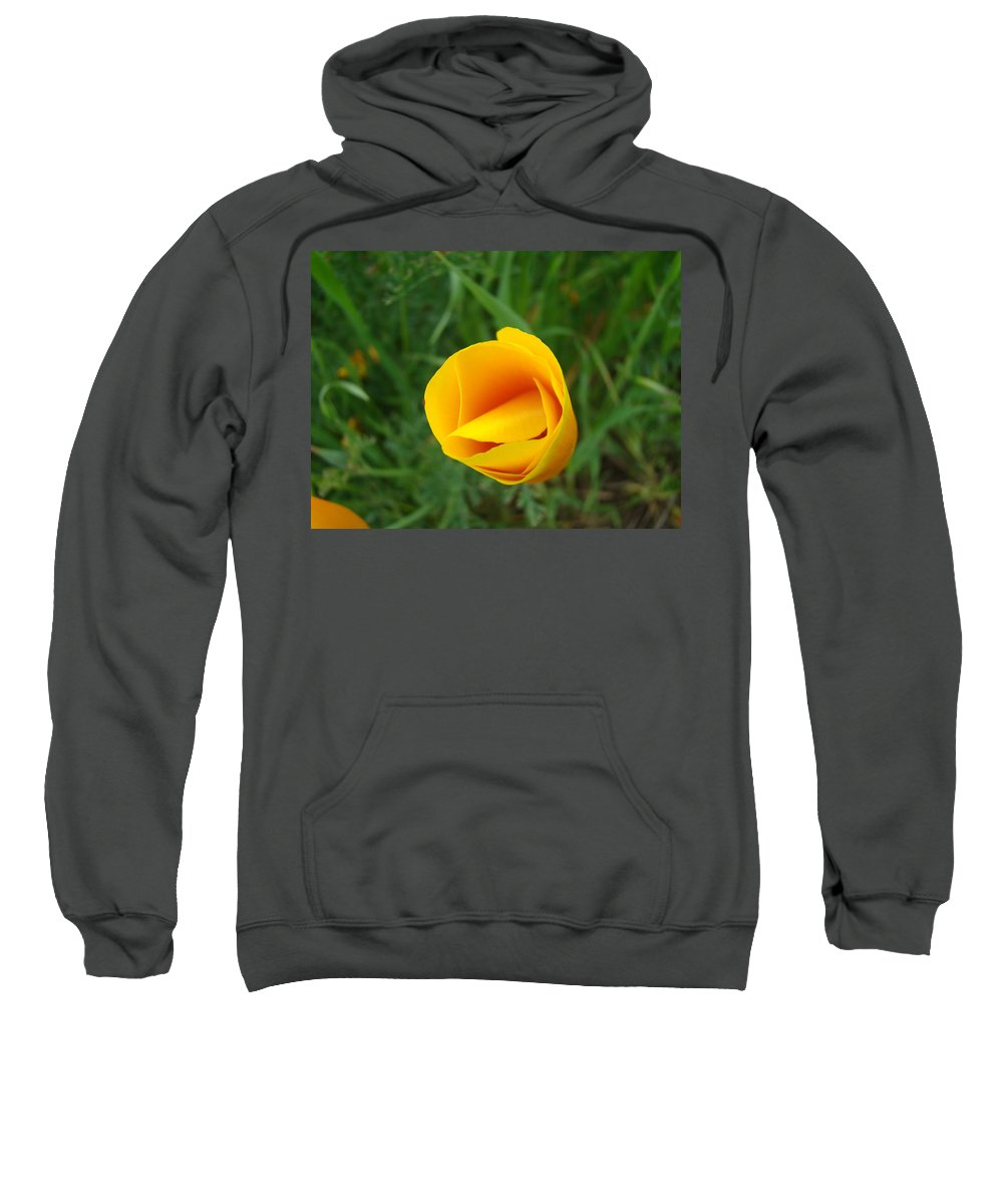 �poppies Artwork� Sweatshirt featuring the photograph Poppy Flower Bud 9 Orange Poppies Green Meadow Art Prints Baslee Troutman by Baslee Troutman