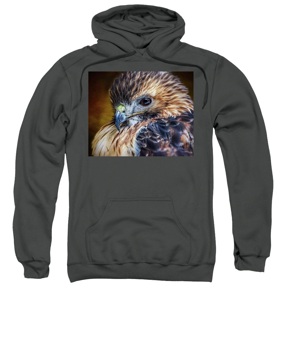 Red-tailed Hawk Sweatshirt featuring the photograph Portrait Of A Red-tailed Hawk by Wes Iversen