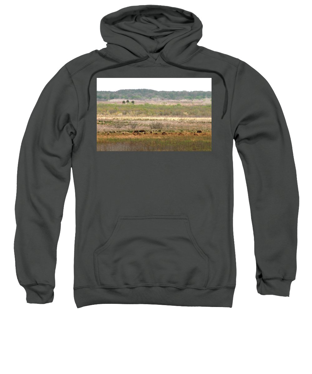 Landscape Sweatshirt featuring the photograph Prairie Bison by Lindy Brown