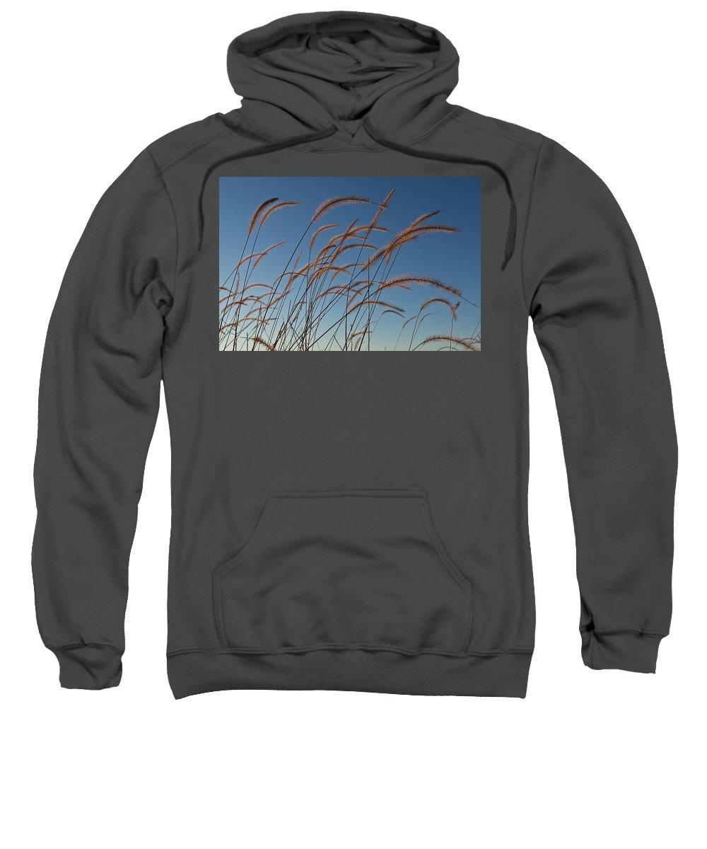 Native Sweatshirt featuring the photograph Prairie Grass Landscape by Steve Gadomski