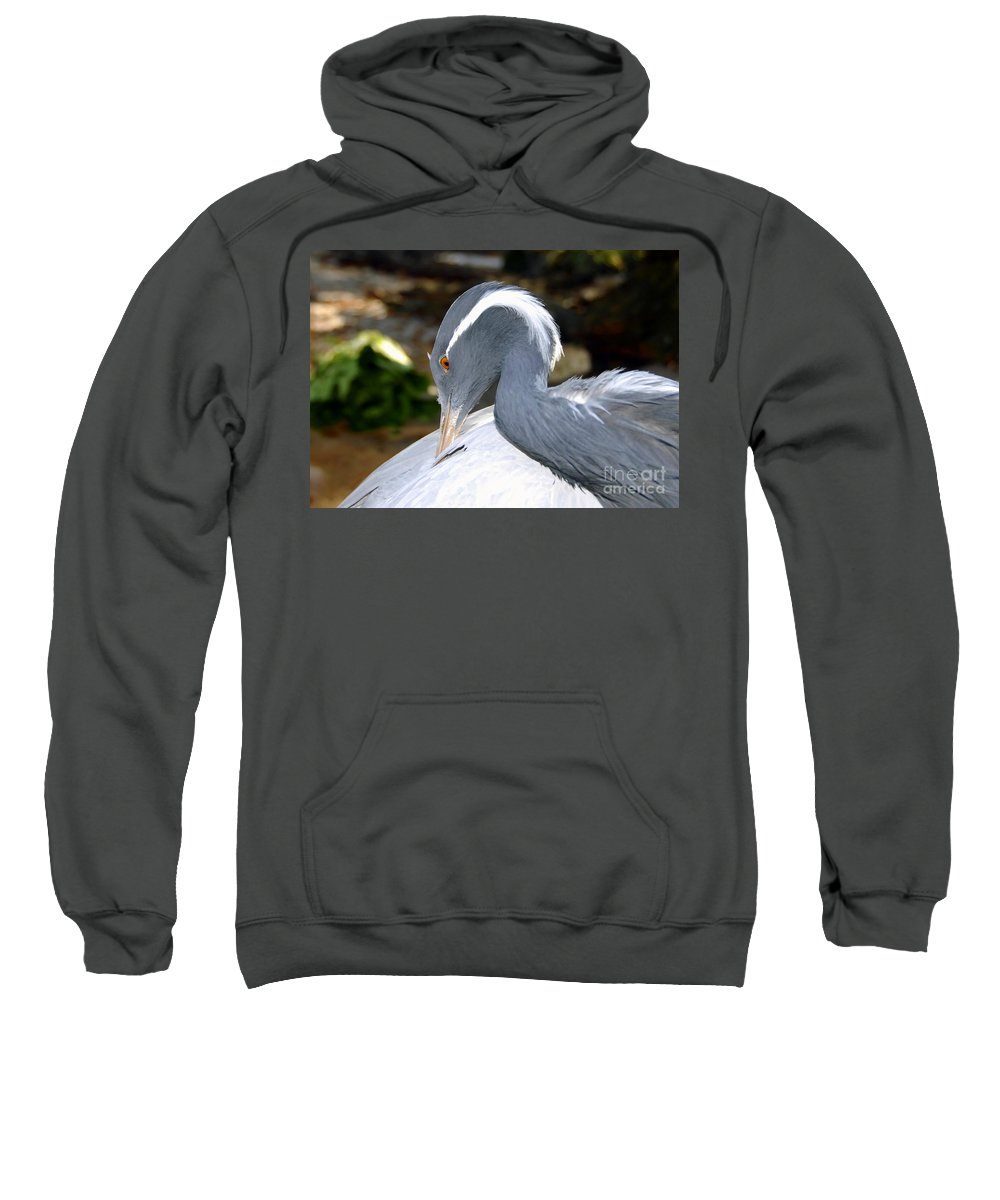 Bird Sweatshirt featuring the photograph Preening Bird by David Lee Thompson