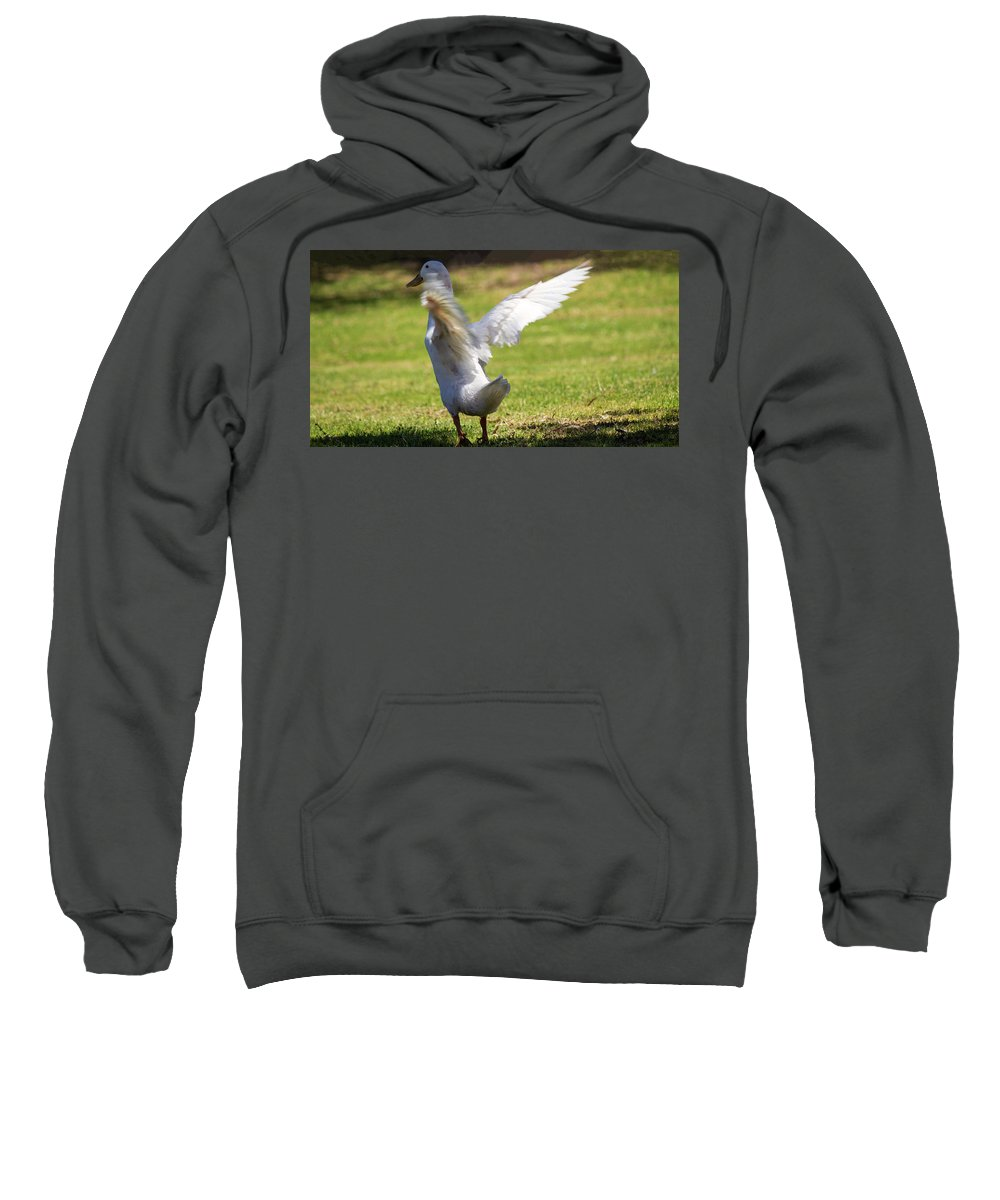 Duck Sweatshirt featuring the photograph Preparing For Lift Off by Tania Read