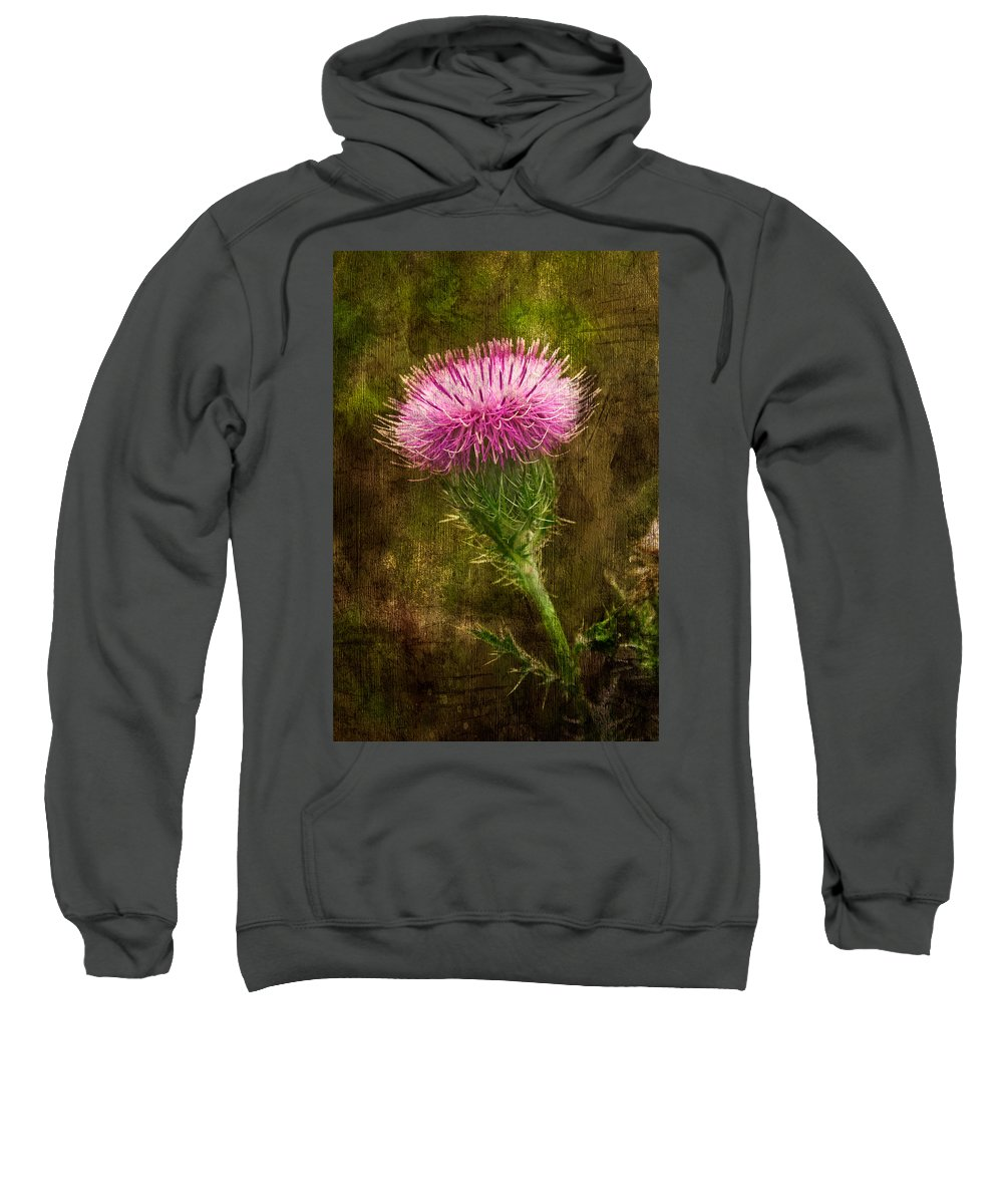 Thistle Sweatshirt featuring the photograph Prickly Thistle by Rich Leighton