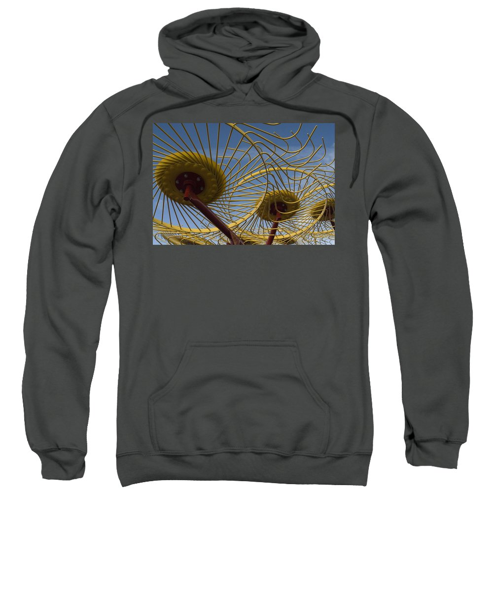 Farm Sweatshirt featuring the photograph Primary 1 by Sara Stevenson