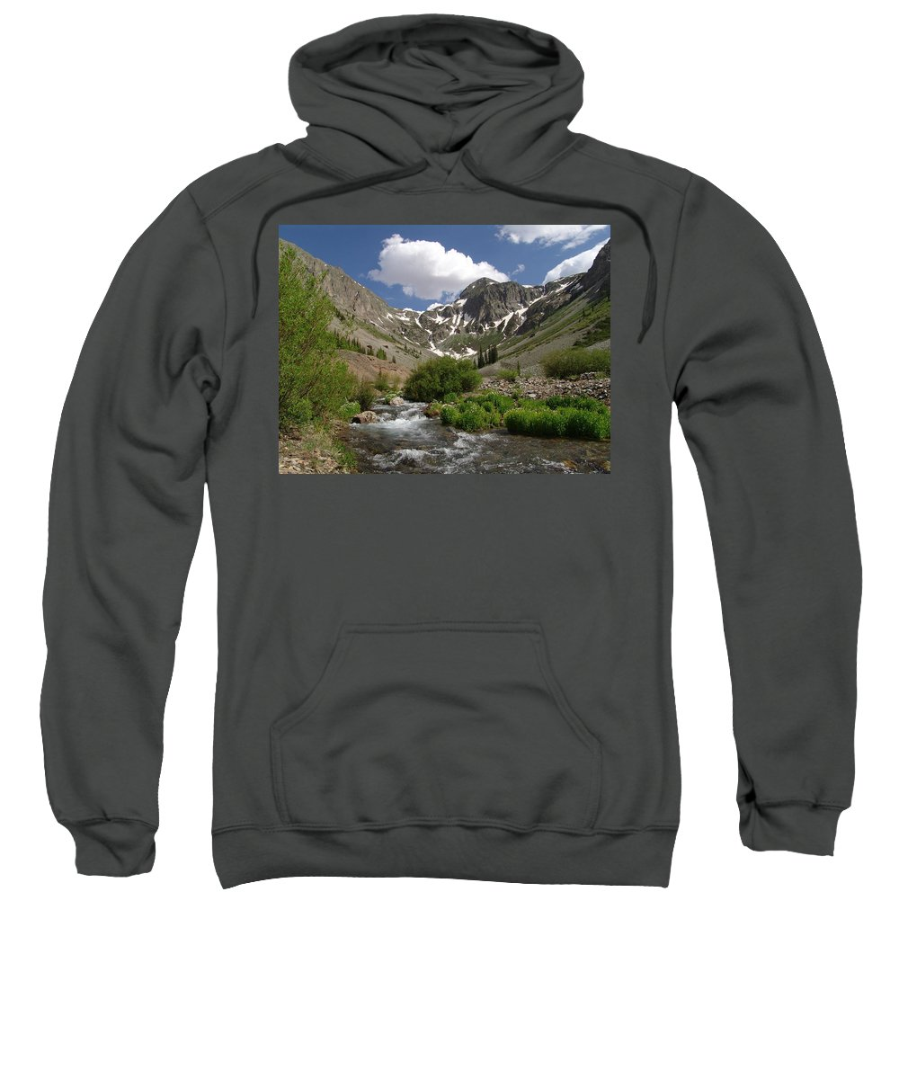 Trees Sweatshirt featuring the photograph Pure Mountain Beauty by Carol Milisen