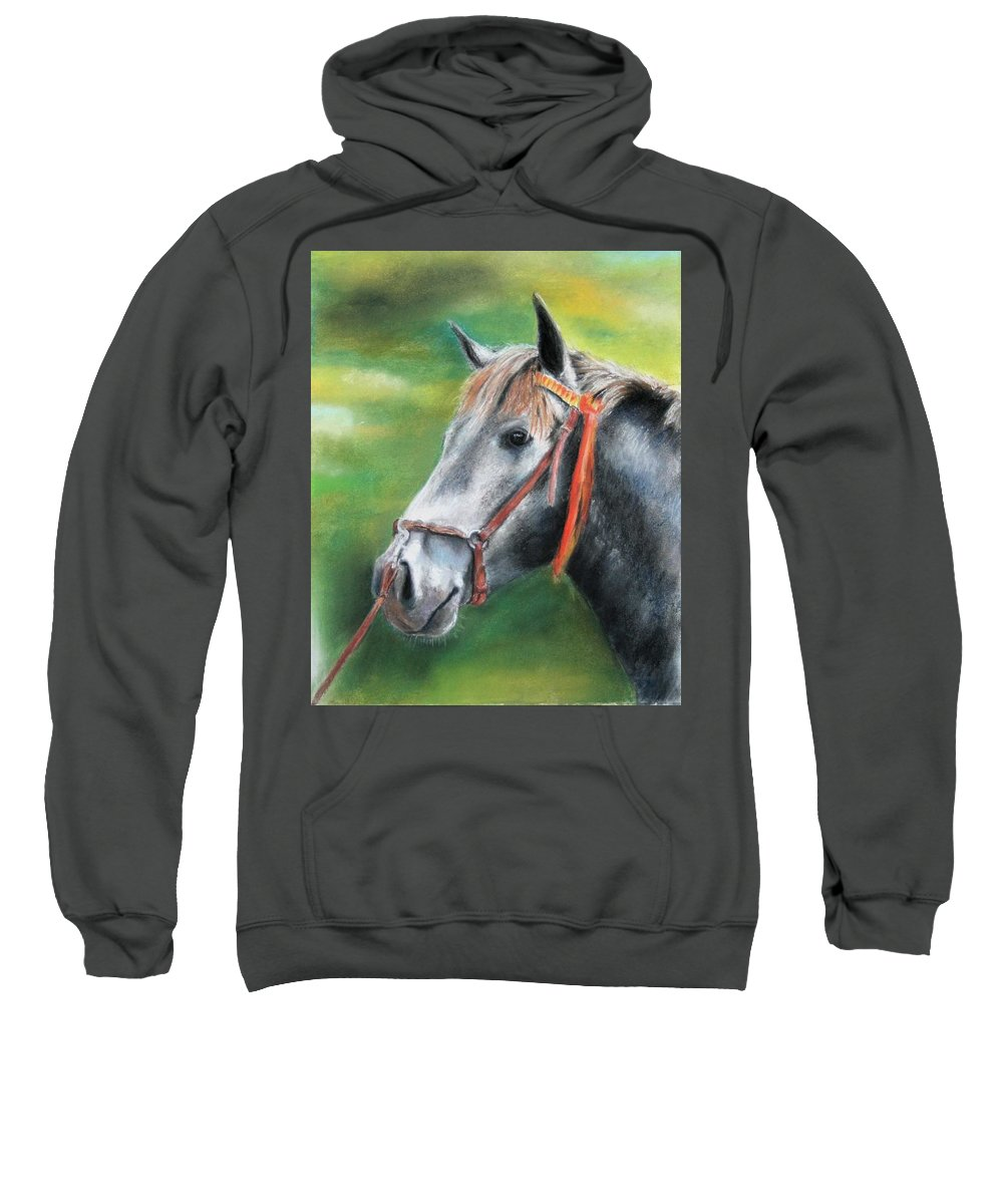 Horse Sweatshirt featuring the painting Pure Spanish by Ceci Watson
