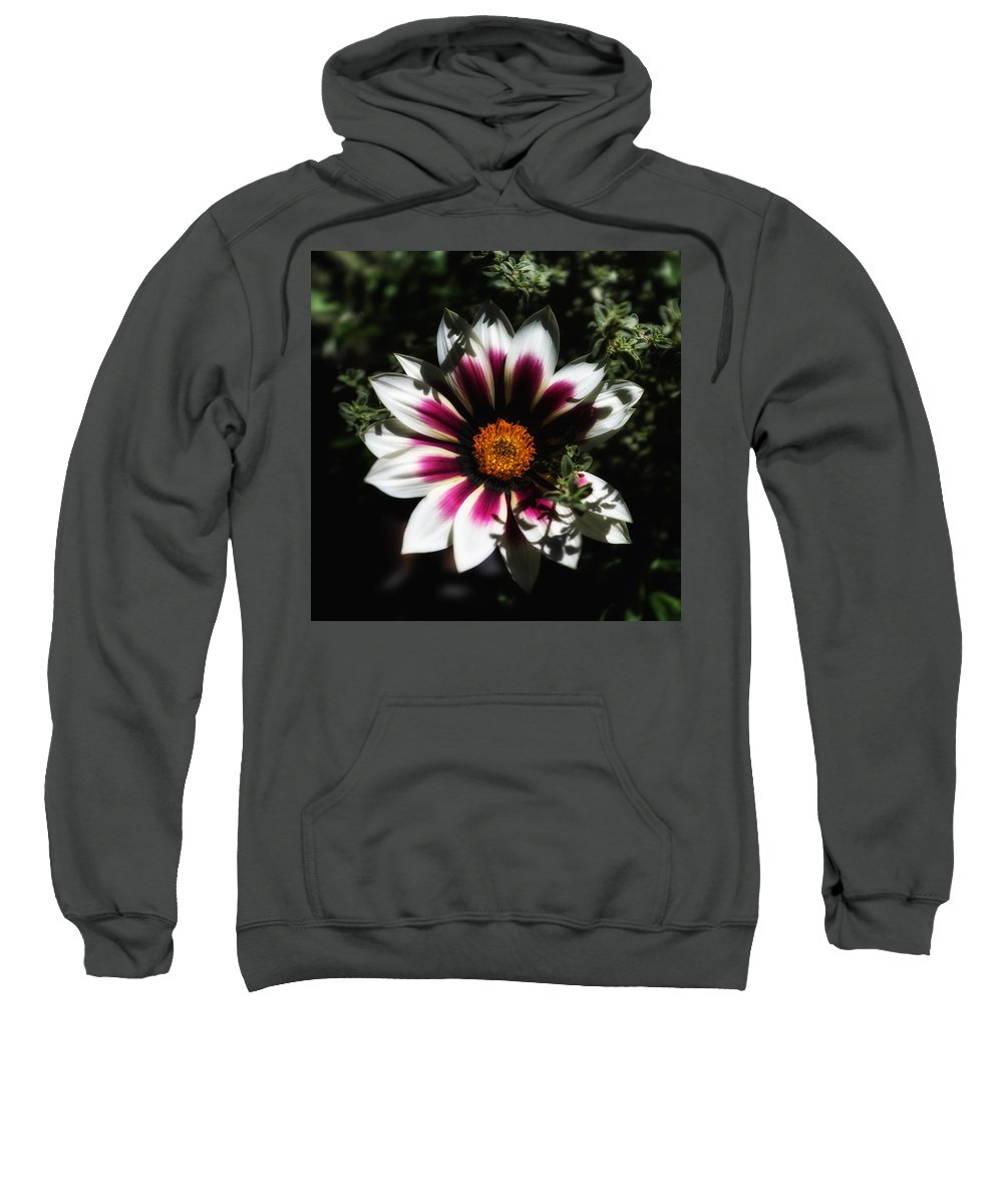 Flower Sweatshirt featuring the photograph Purple And Orange Glow by Ron White