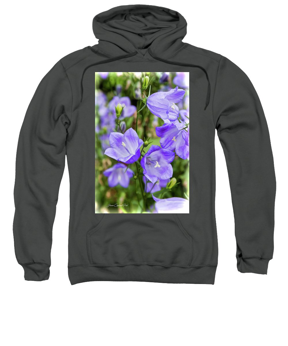Purple Sweatshirt featuring the photograph Purple Bell Flowers by Joann Copeland-Paul