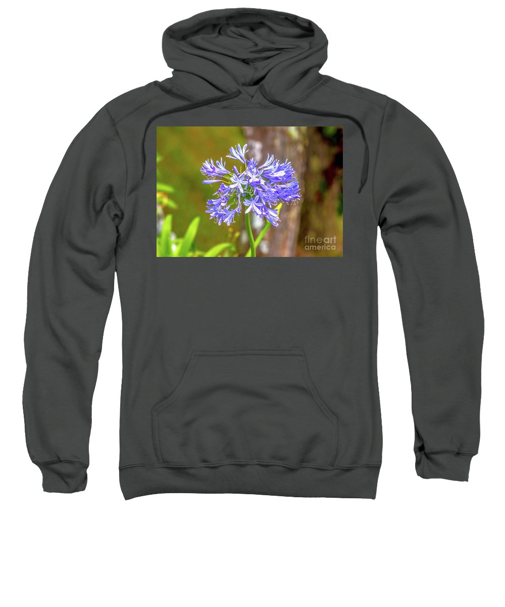 Flower Sweatshirt featuring the photograph Purple Bells And Blossoms by Donald Carr