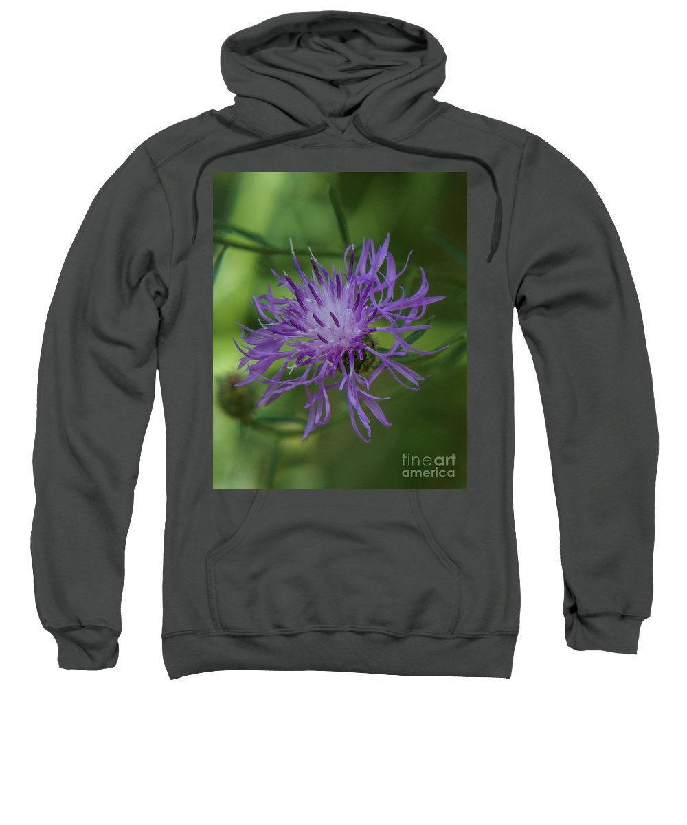 Purple Sweatshirt featuring the photograph Purple Flower 8 by Christy Garavetto