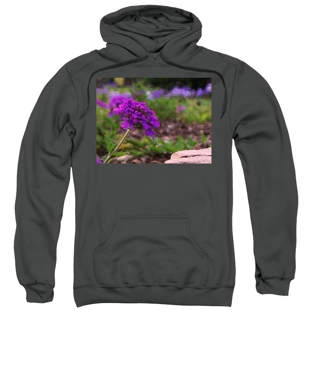 Purple Sweatshirt featuring the painting Purple Flower by Eric Schiabor