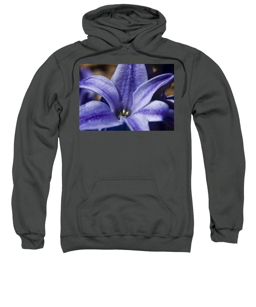 Hyacinth Sweatshirt featuring the photograph Purple Hyacinth by Teresa Mucha