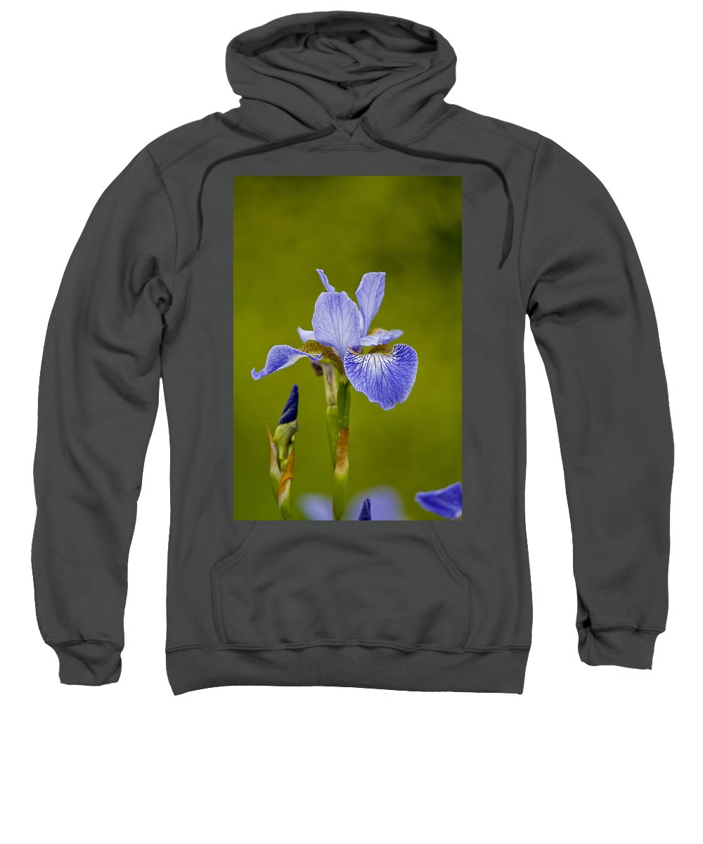 Gardens Sweatshirt featuring the photograph Purple Iris 2 by Michael Cummings