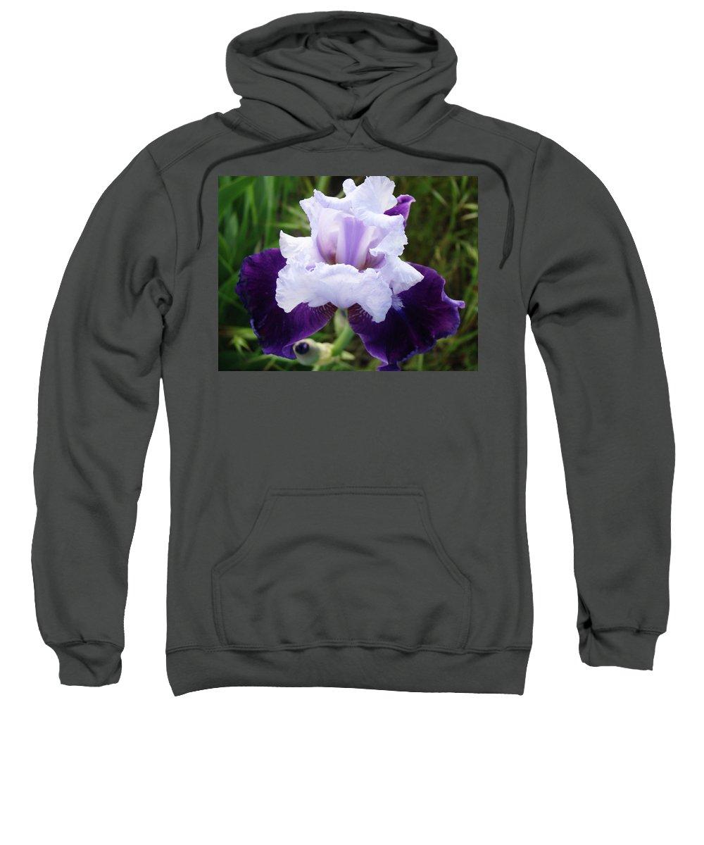 Iris Sweatshirt featuring the photograph Purple Iris Flower Art Prints Garden Floral Baslee Troutman by Baslee Troutman