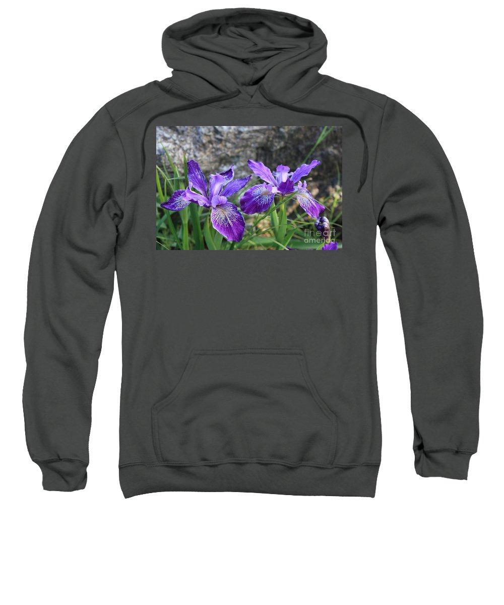 Purple Sweatshirt featuring the photograph Purple Irises With Gray Rock by Carol Groenen