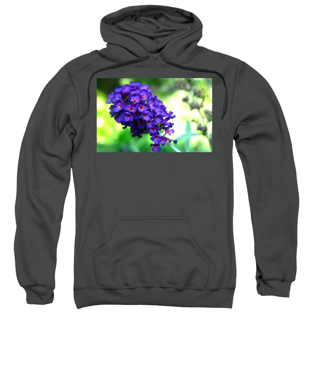 Butterfly Bush Sweatshirt featuring the photograph Purple Peace by Brittany Horton