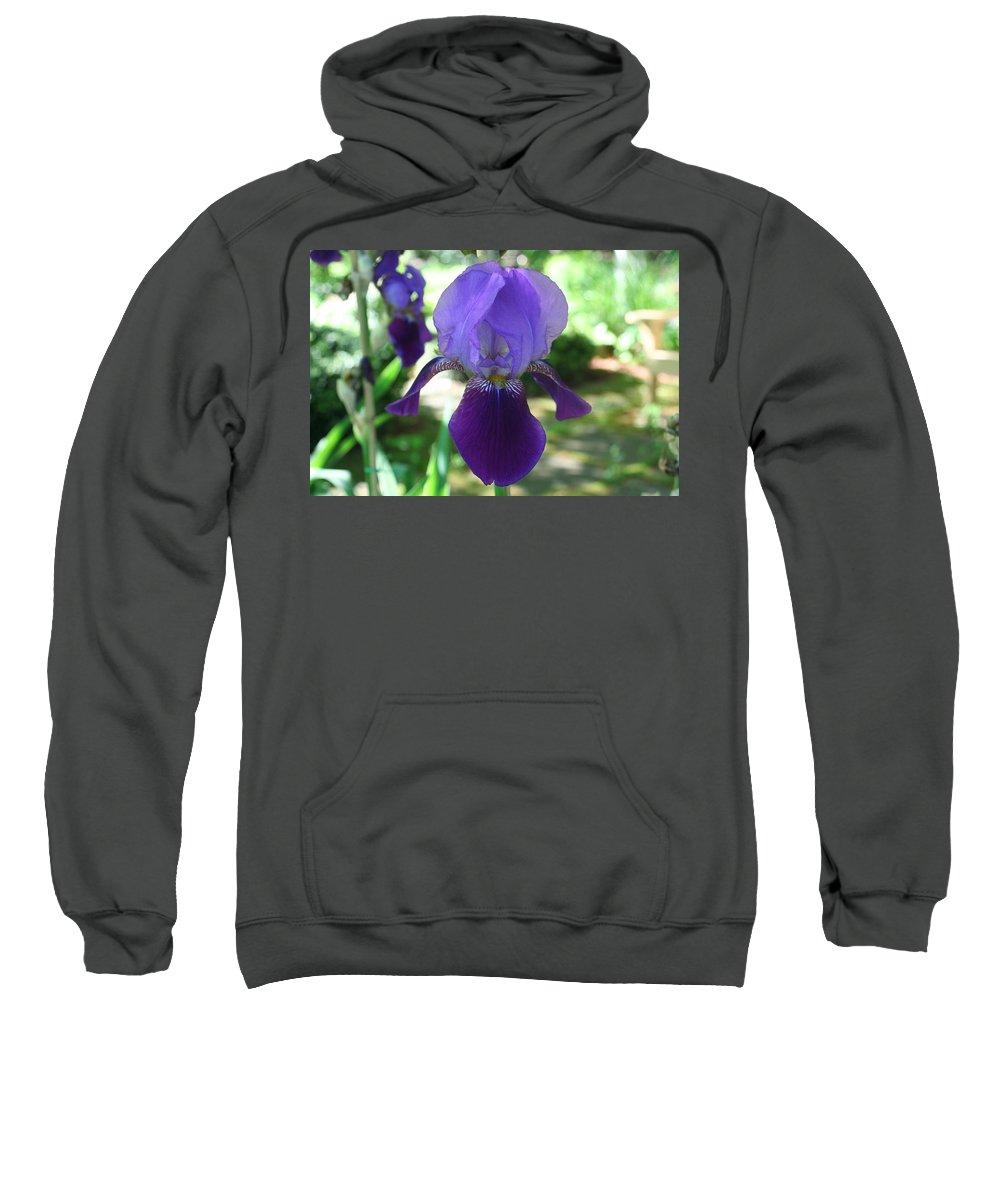 Photography Sweatshirt featuring the digital art Purple Pleaser by Barbara S Nickerson