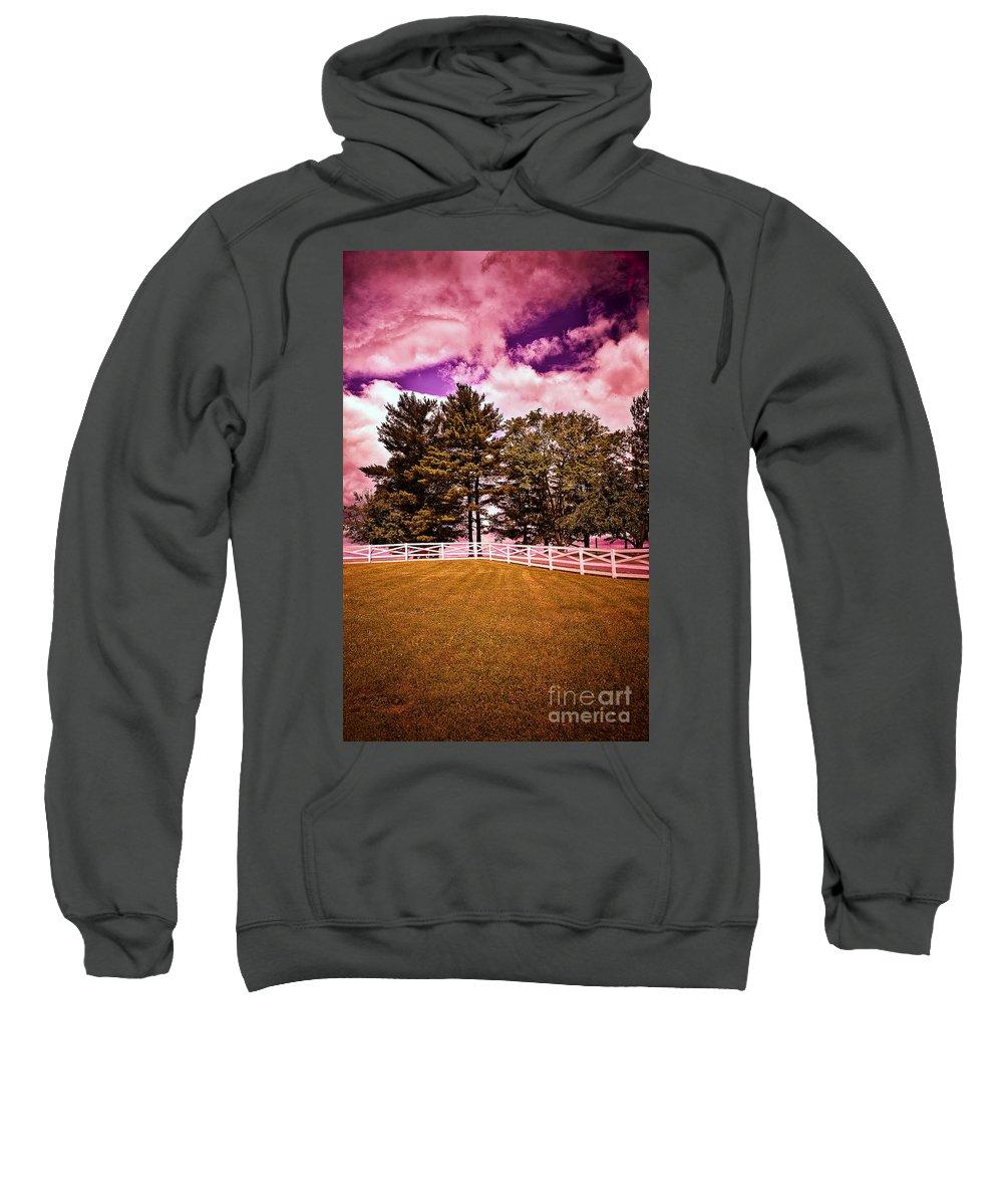 Trees Sweatshirt featuring the photograph Purple Sky by Madeline Ellis