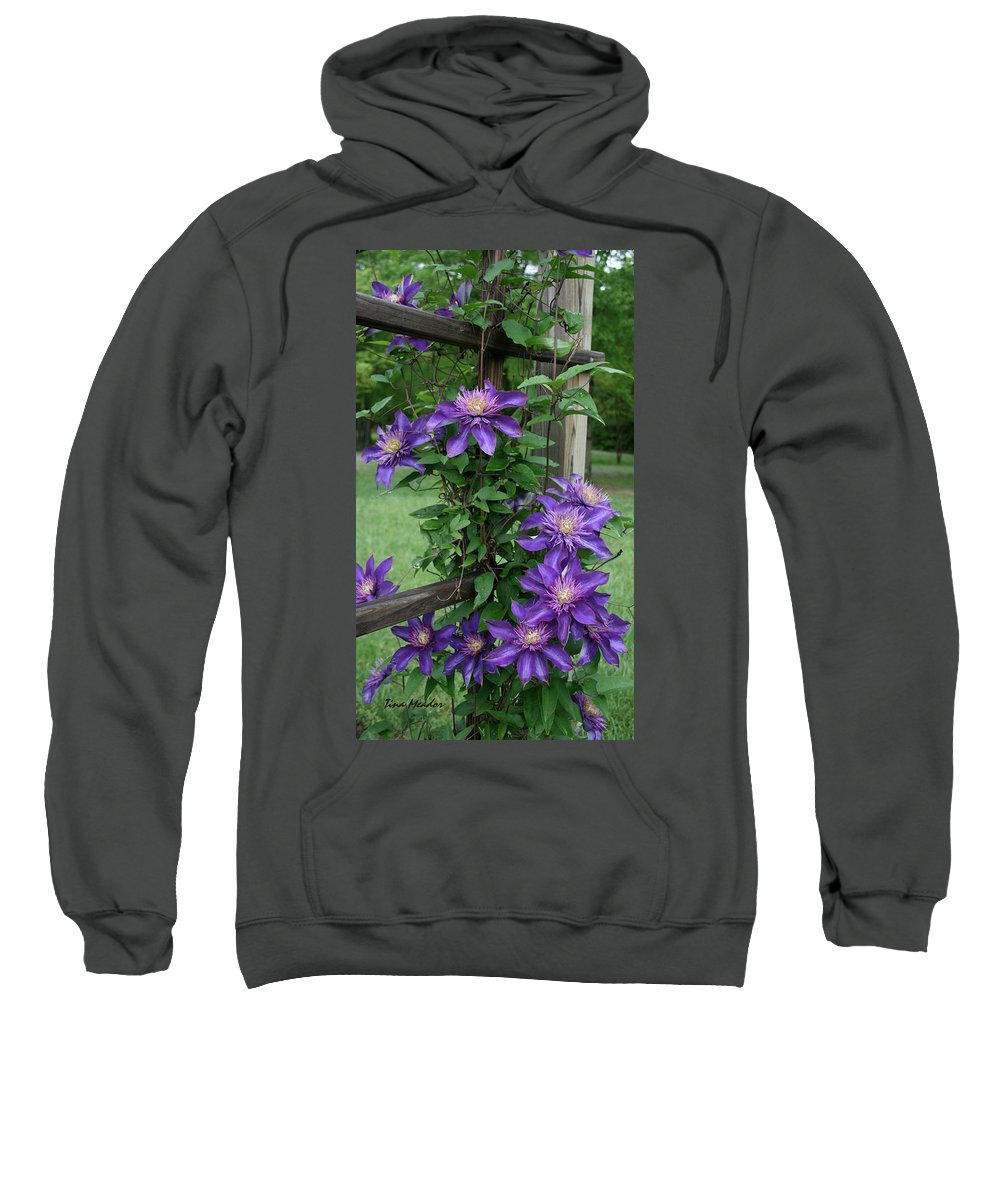 Purple Sweatshirt featuring the photograph Purple by Tina Meador