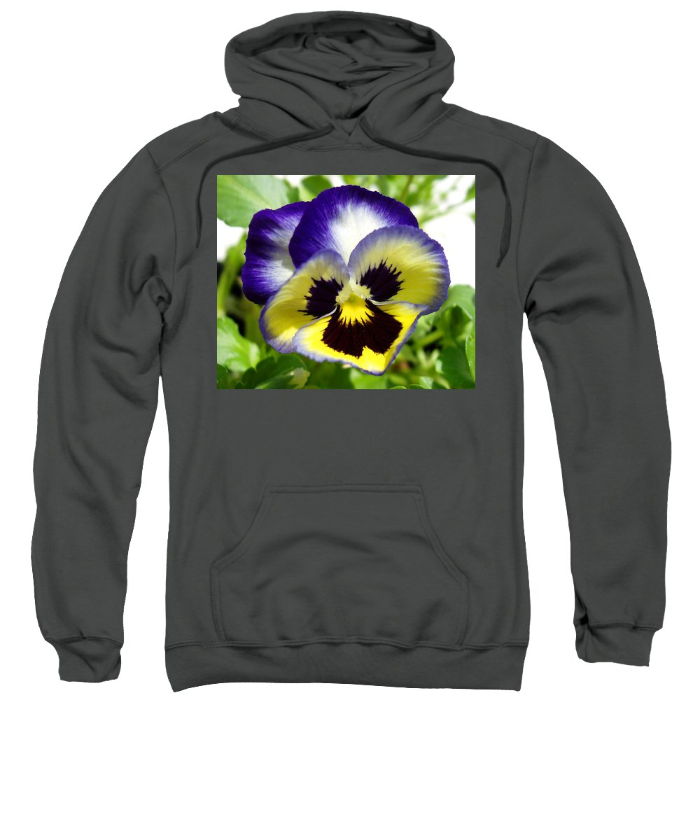 Pansy Sweatshirt featuring the photograph Purple White And Yellow Pansy by Nancy Mueller