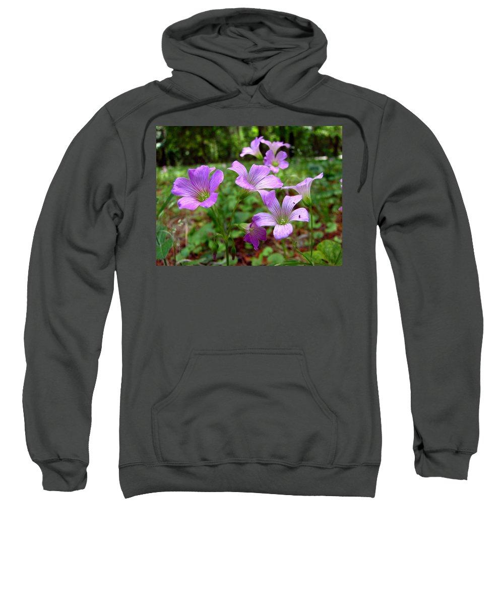 Wildflowers Sweatshirt featuring the photograph Purple Wildflowers Macro 2 by J M Farris Photography