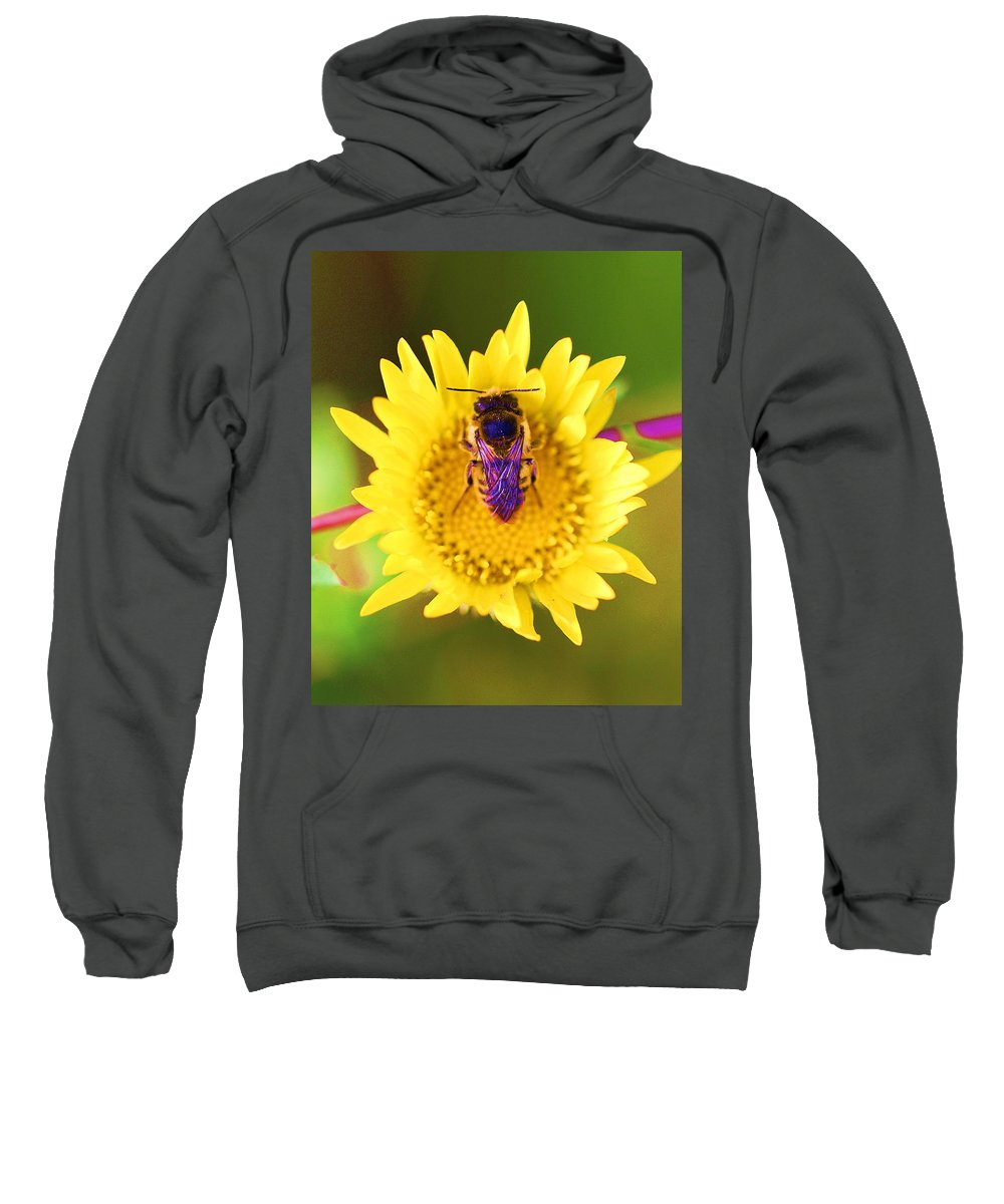Bees With Purple Wings Sweatshirt featuring the photograph Purple Wings by John King